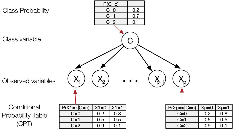 Graphical model representing the joint distribution over $C, X_1, X_2, \dots, X_p$
